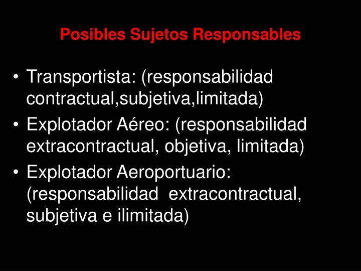 Posibles Sujetos Responsables