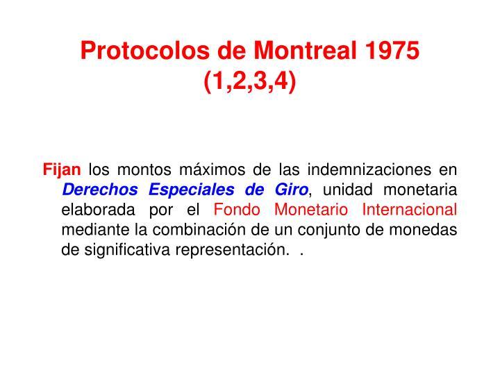 Protocolos de Montreal 1975