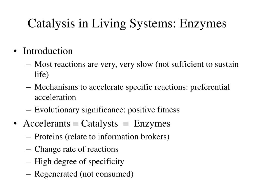 Catalysis in Living Systems: Enzymes