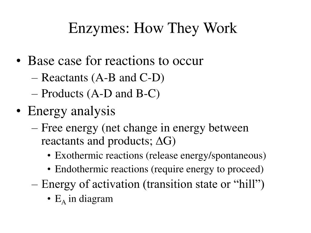 Enzymes: How They Work