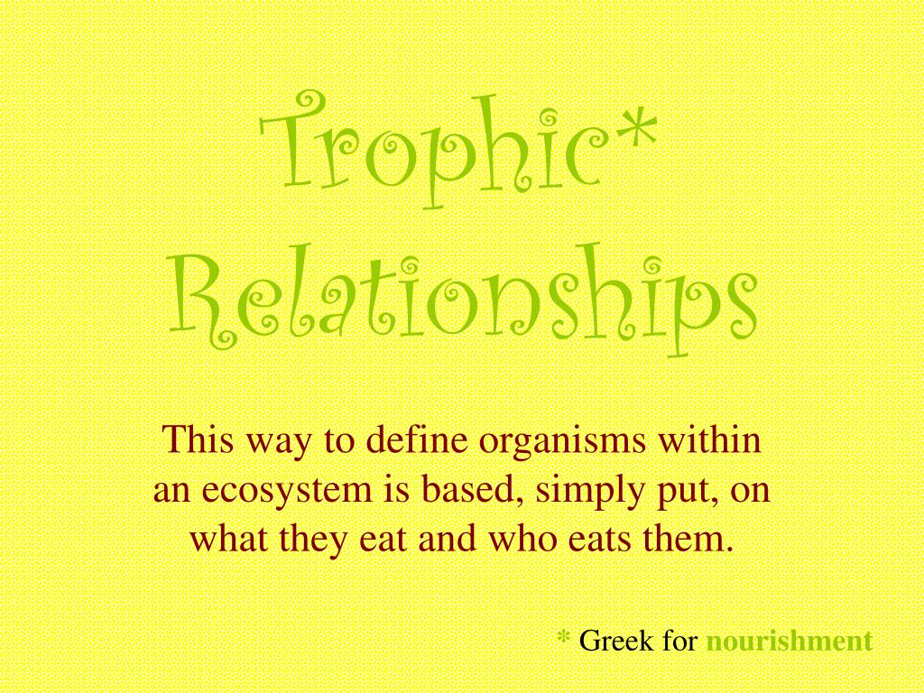 Trophic* Relationships