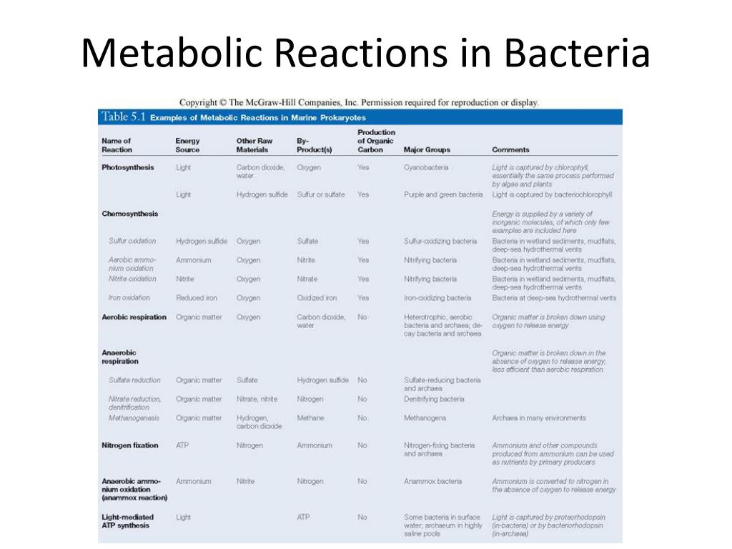 Metabolic Reactions in Bacteria