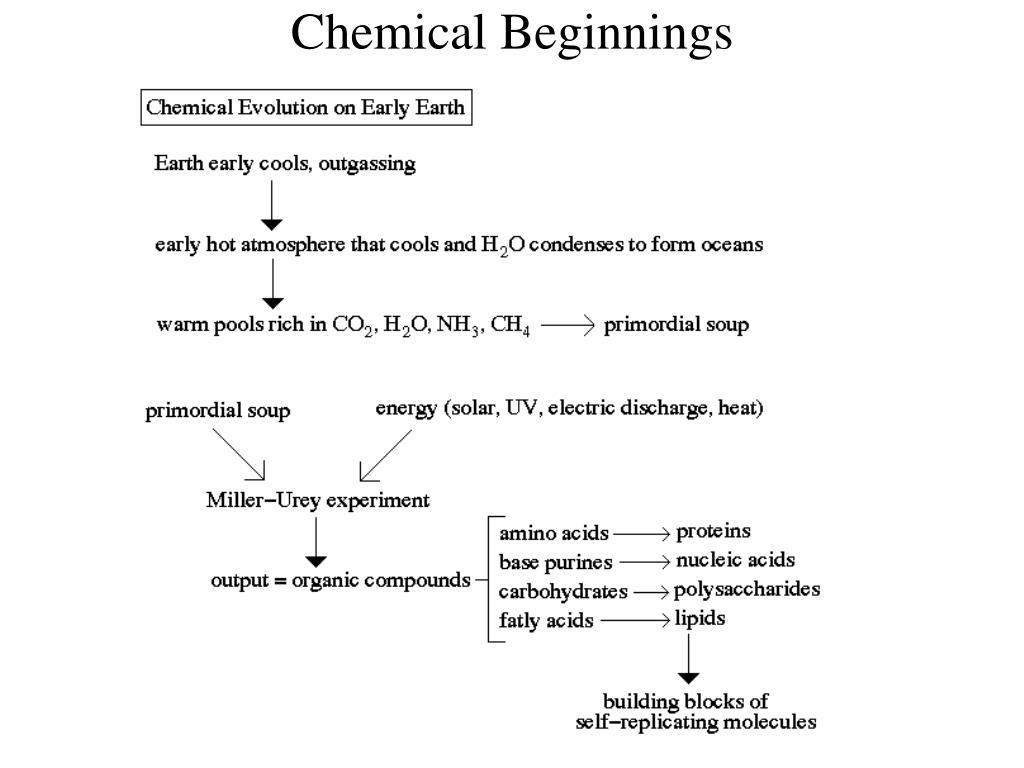 Chemical Beginnings