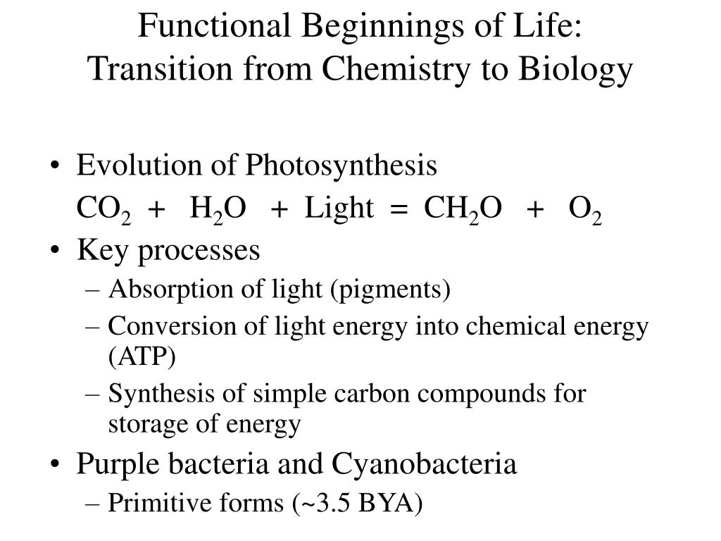 Functional Beginnings of Life: Transition from Chemistry to Biology