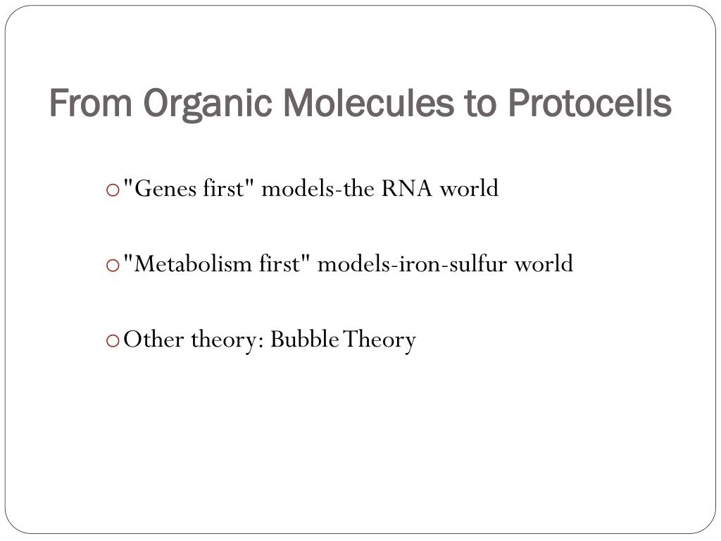 From Organic Molecules to Protocells