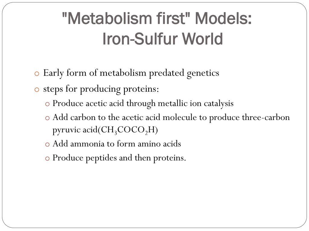 """""""Metabolism first"""" Models:"""