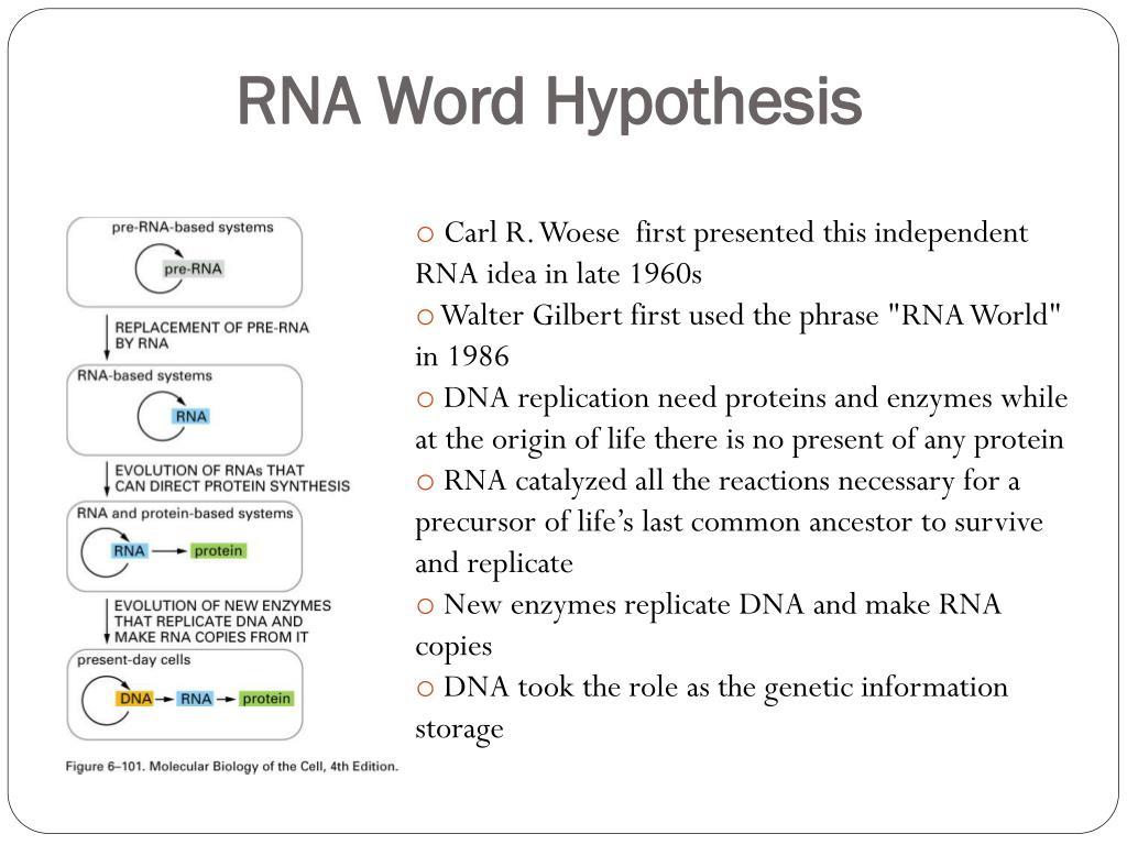RNA Word Hypothesis