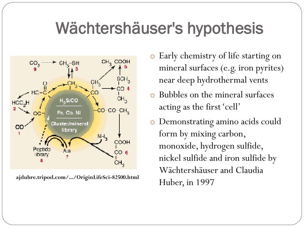 Wächtershäuser's hypothesis