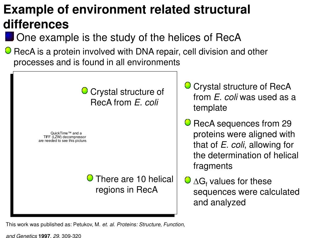 Example of environment related structural differences