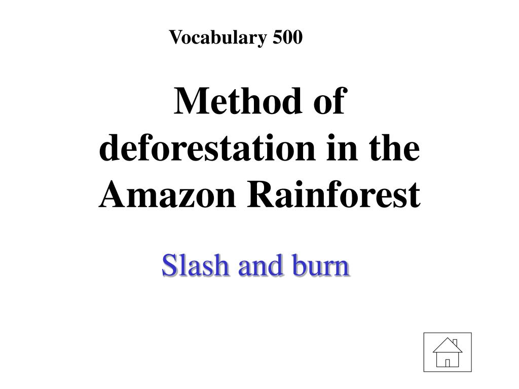 Vocabulary 500