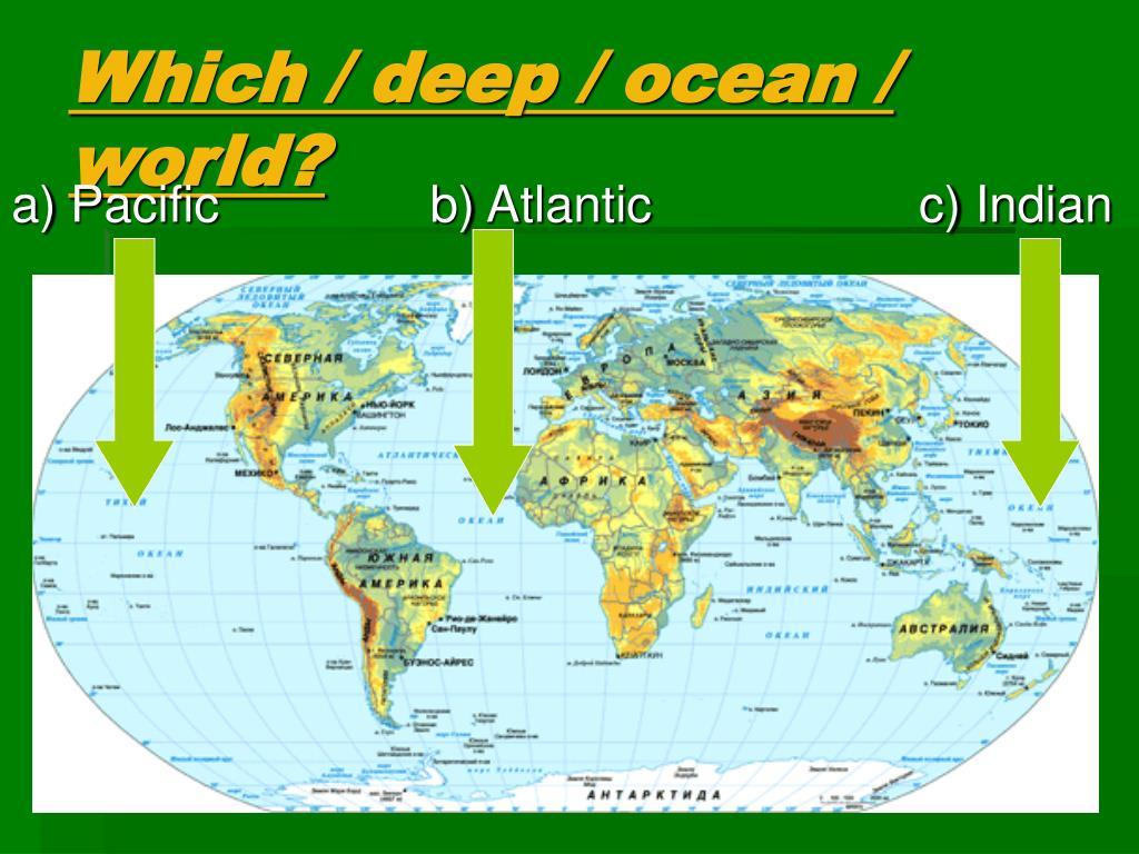 Which / deep / ocean / world?