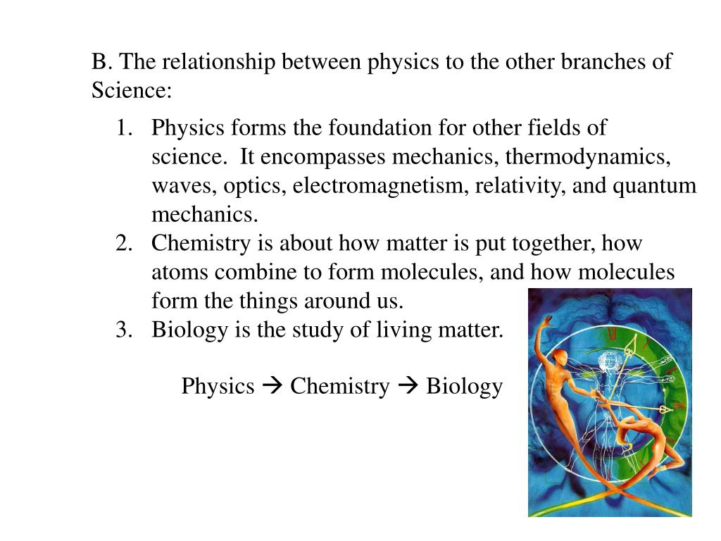 B. The relationship between physics to the other branches of
