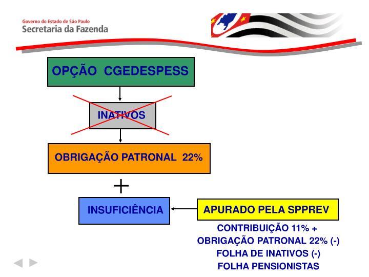 OPÇÃO  CGEDESPESS