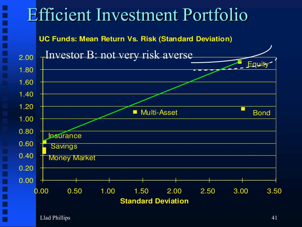 Efficient Investment Portfolio