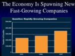 the economy is spawning new fast growing companies
