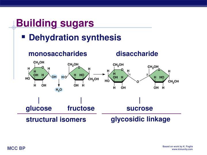 Building sugars