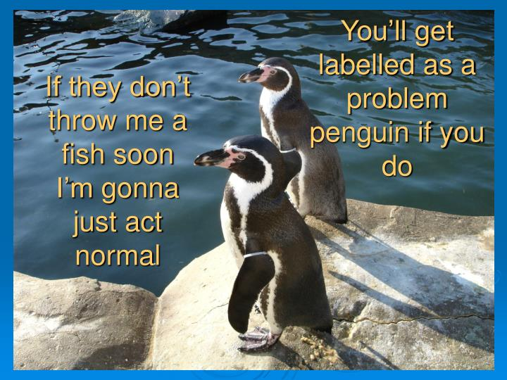 You'll get labelled as a problem penguin if you do