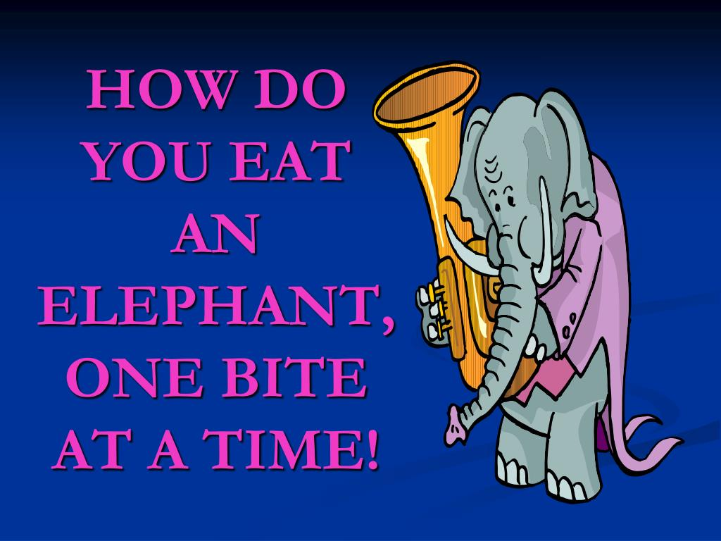 HOW DO YOU EAT AN ELEPHANT,ONE BITE AT A TIME!