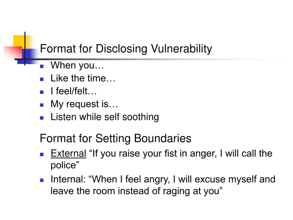 Format for Disclosing Vulnerability