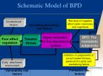 schematic model of bpd