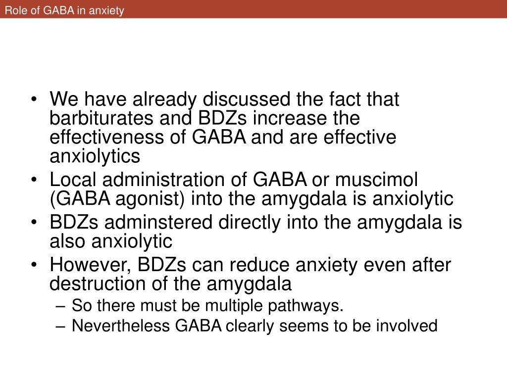 Role of GABA in anxiety