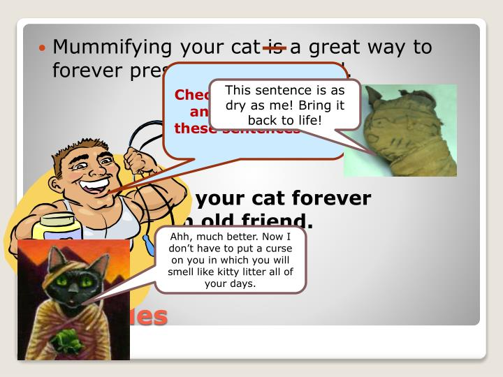 Mummifying your cat is a great way to forever preserve an old friend.
