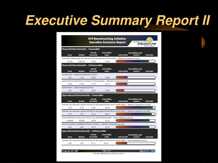 Executive Summary Report II