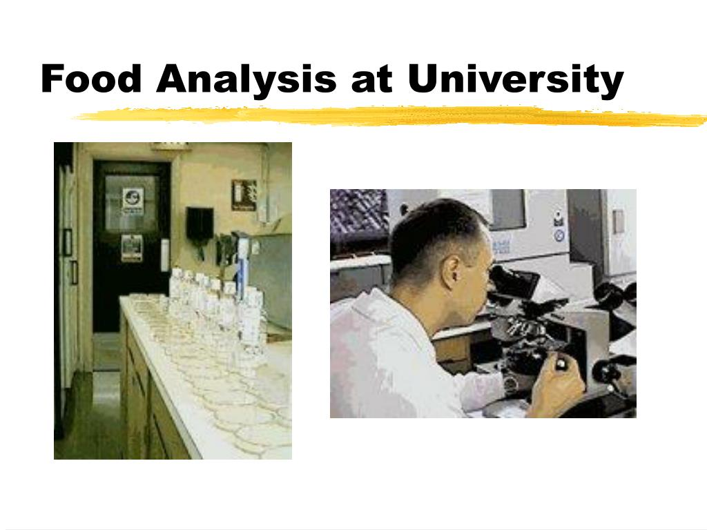 Food Analysis at University