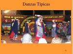 danzas t picas