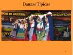 danzas t picas24