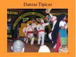 danzas t picas25