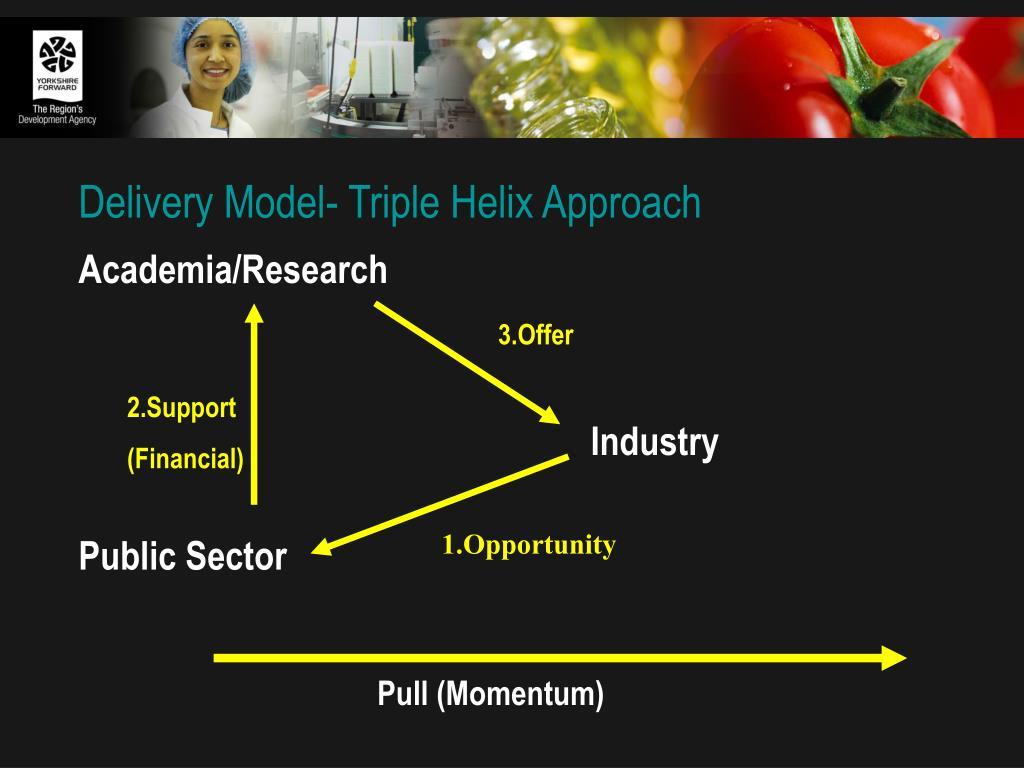 Delivery Model- Triple Helix Approach