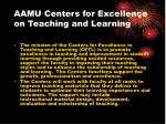 aamu centers for excellence on teaching and learning19