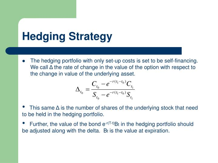 Hedging Strategy
