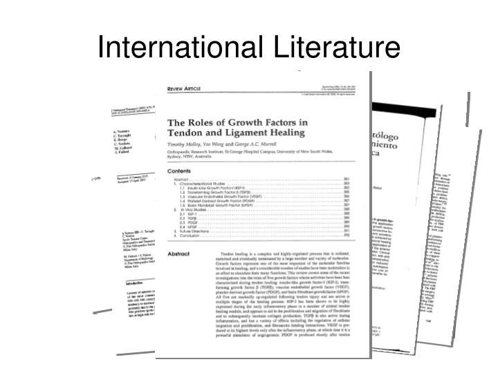 International Literature