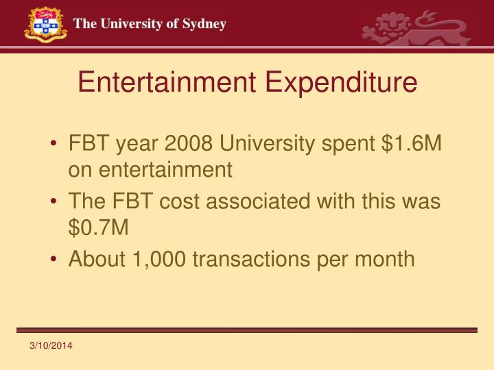 Entertainment expenditure