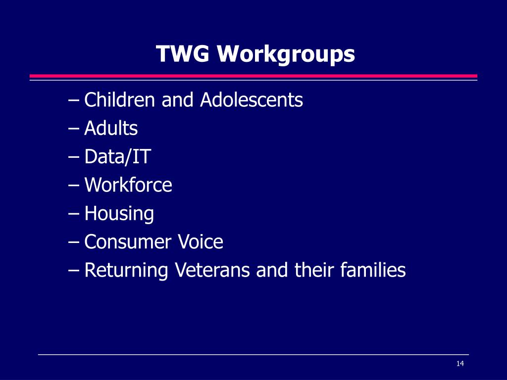 TWG Workgroups