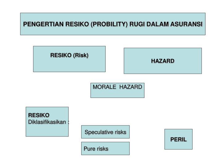 PENGERTIAN RESIKO (PROBILITY) RUGI DALAM ASURANSI