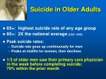 suicide in older adults