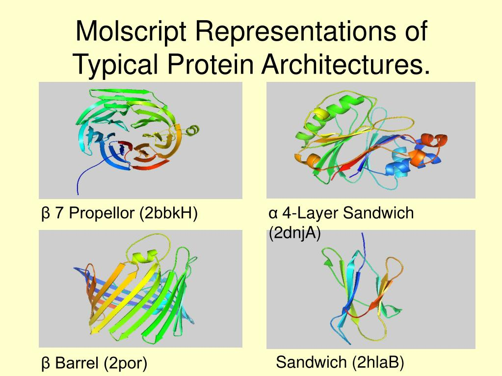 Molscript Representations of