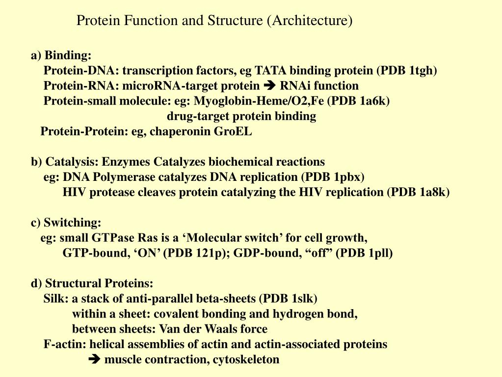 Protein Function and Structure (Architecture)
