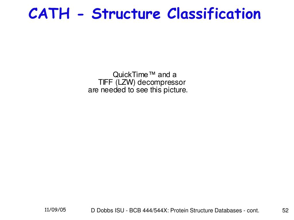 CATH - Structure Classification