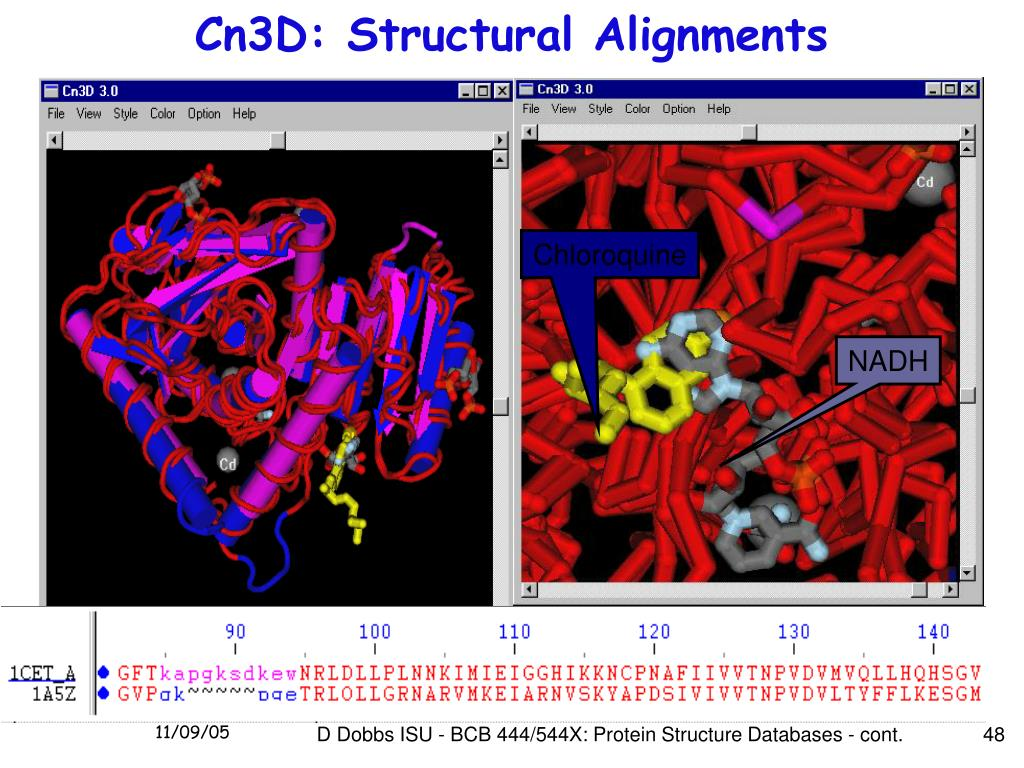Cn3D: Structural Alignments