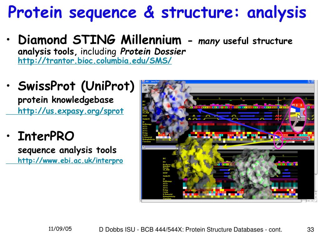 Protein sequence & structure: analysis
