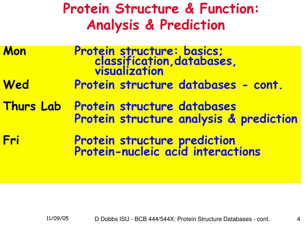 Protein Structure & Function: