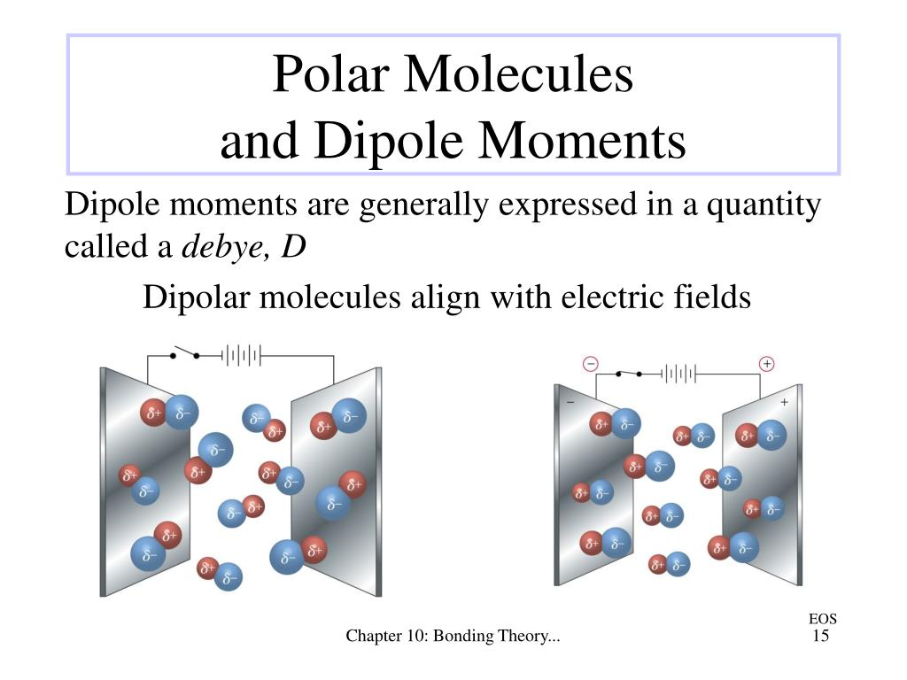Dipolar molecules align with electric fields