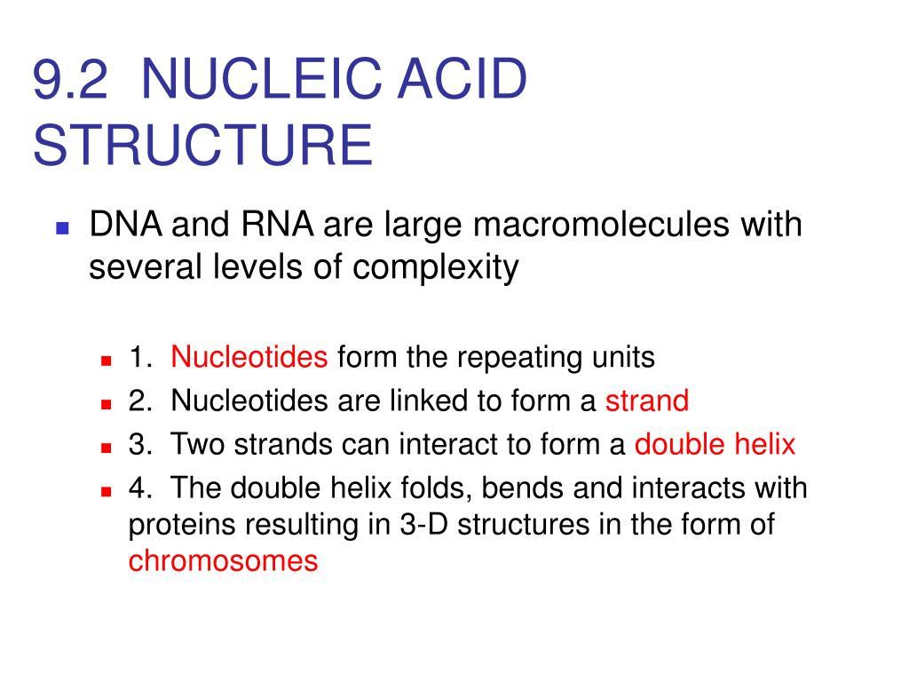 9.2  NUCLEIC ACID STRUCTURE