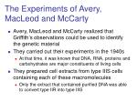 the experiments of avery macleod and mccarty