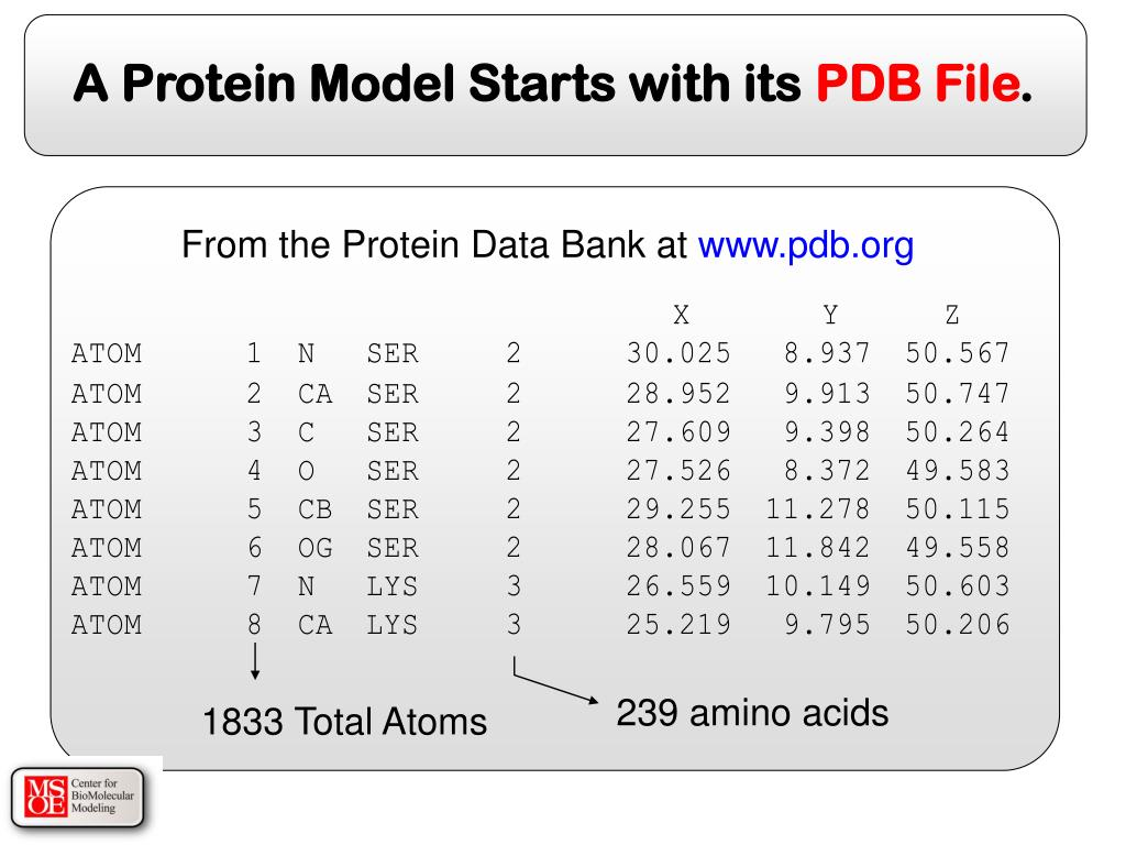 From the Protein Data Bank at