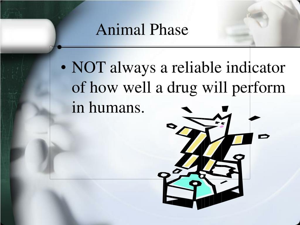 Animal Phase